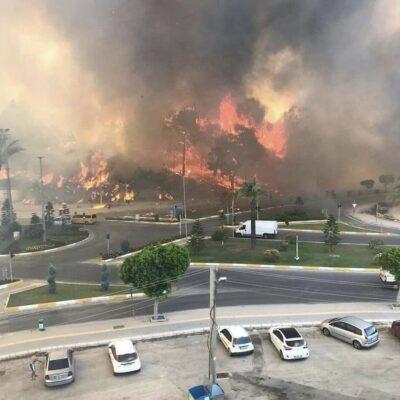 Сильный лесной пожар добрался до города в Анталье